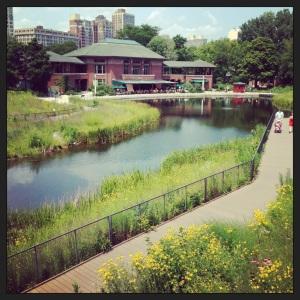 Lincoln Park (2)